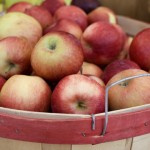 bushel of apples, basket, fall