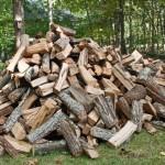 wooddelivered10091501