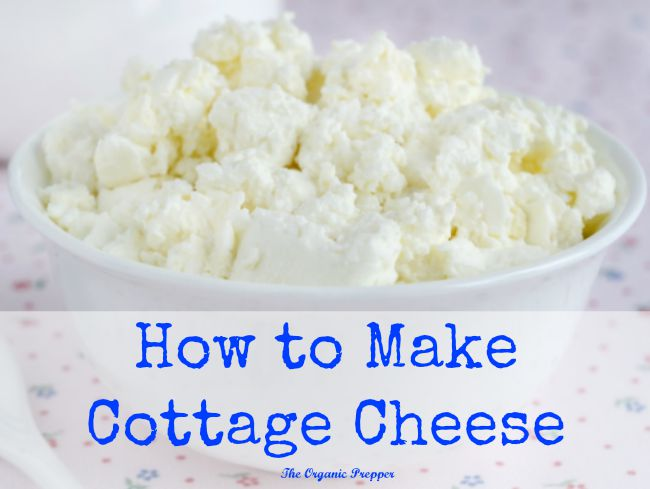 How to make cottage cheese the organic prepper for What is a cottage