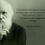 darwin_adaptability1 (1)