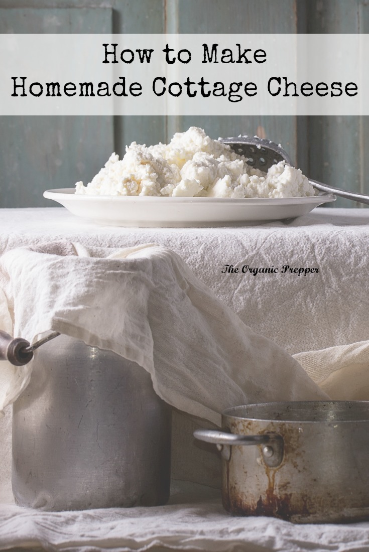 Homemade Cottage Cheese Is Creamy, Fluffy, And Delicious, And Itu0027s Made  With Only