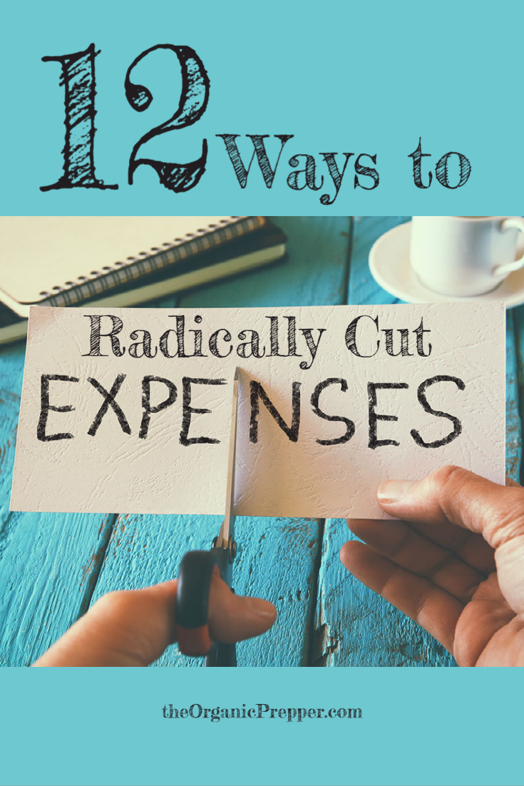 Personal Austerity: 12 Ways to Radically Cut Expenses