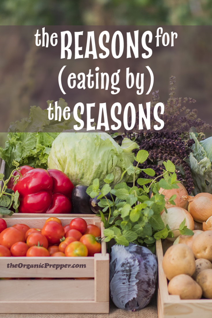 The Reasons for (Eating by) the Seasons