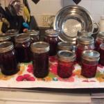blueberryandraspberryjams018