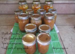 peach canning