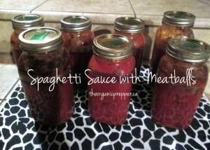 spaghetti sauce with meatballs