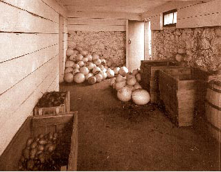 How to Create a Root Cellar for Food Storage - The Organic ...