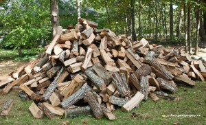 woodpile-300x182 The EPA Takes an Ax to Self-Sufficiency: Most Woodburning Stoves Will Soon Be Illegal