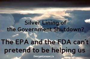 silver-lining shutdown