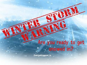 Are you ready to get snowed in