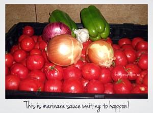 Marinara sauce waiting to happen