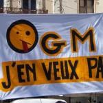 France bans gmos