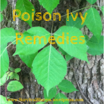 pondering-poison-ivy-remedies-and-itch