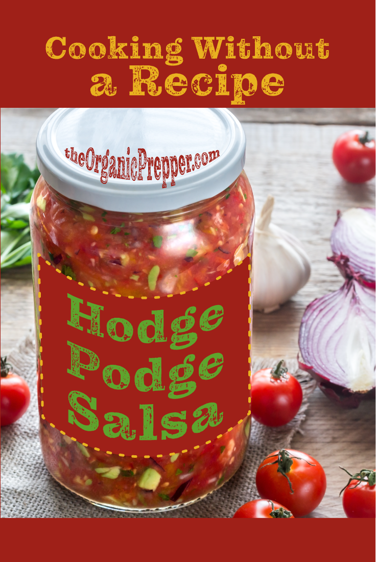 How to Cook without a Recipe: Hodge-Podge Salsa