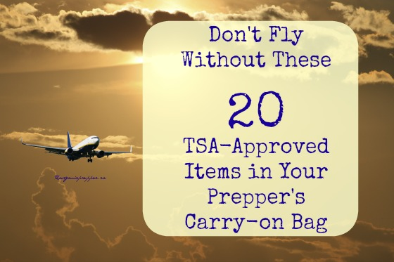 Don't Fly Without These 20 TSA-Approved Items in Your Prepper's ...