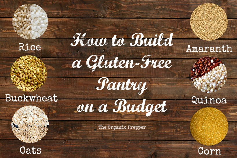 how to become a prepper on a budget