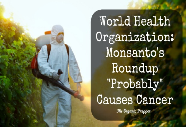 Epidemiologic studies of glyphosate and cancer: A review ...