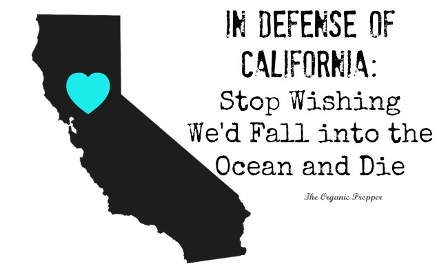 In Defense of California: Stop Wishing We'd Fall into the Ocean and Die