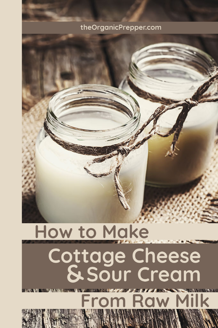 How to Make Cottage Cheese and Sour Cream from Raw Milk