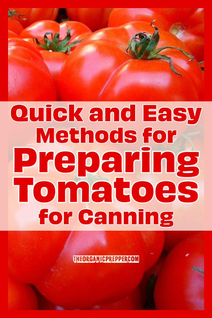 Quick and Easy Methods for Preparing Tomatoes for Canning