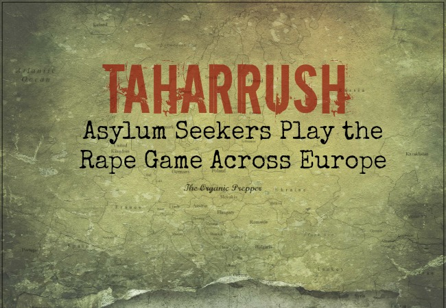About Daisy Luther >> Taharrush: The Rape Game - The Organic Prepper