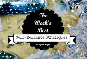 Jan 27 Self Reliance Report