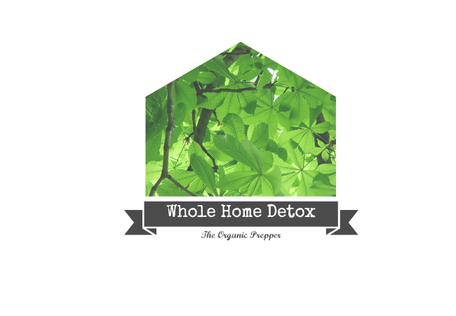 Whole Home Detox logo