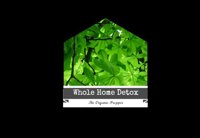 Whole Home Detox logo