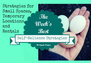 Feb 17 Self Reliance Strategies