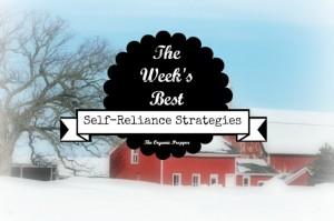 Feb 3 Self Reliance Strategies