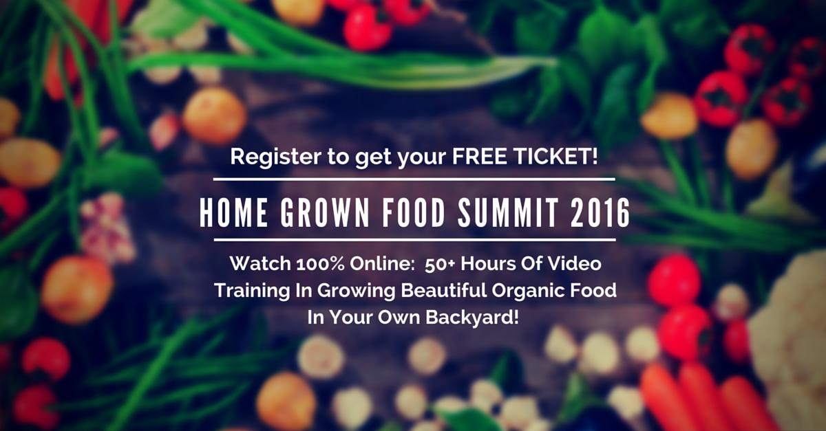 food summit