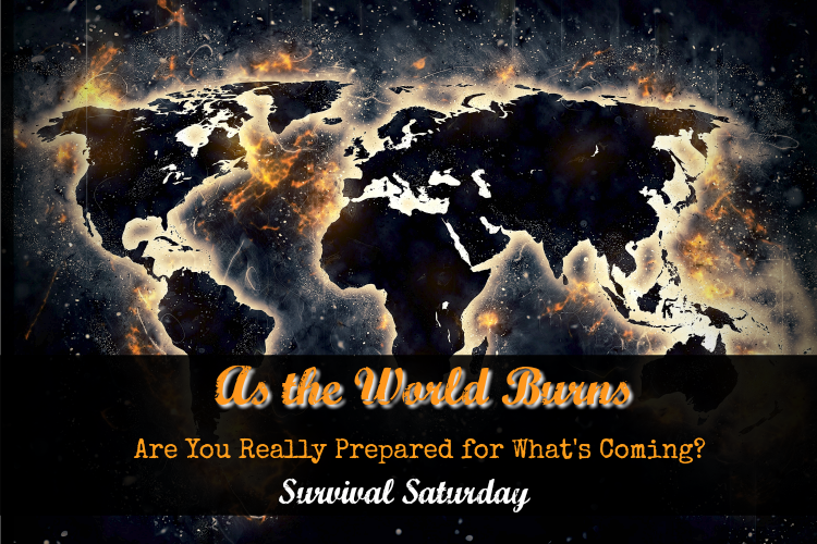 As The World Burns: Are You Really Prepared for What's Coming?