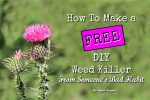 How To Make a FREE DIY Weed Killer from Someone's Bad Habit