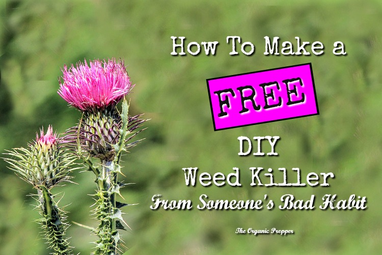how to make your own weed killer with vinegar