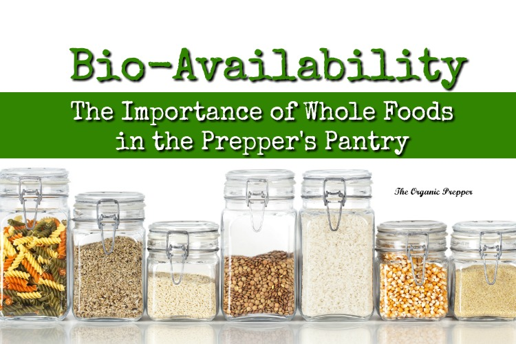 Bio-Availability The Importance of Whole Foods in the Prepperu0027s Pantry - The Organic Prepper  sc 1 st  The Organic Prepper & Bio-Availability: The Importance of Whole Foods in the Prepperu0027s ...