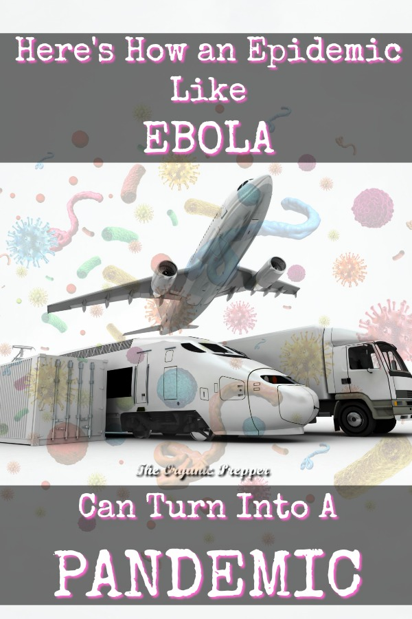 With something like Ebola, panic, the ease of travel, and slow official responses mean that local epidemics can turn into pandemics.