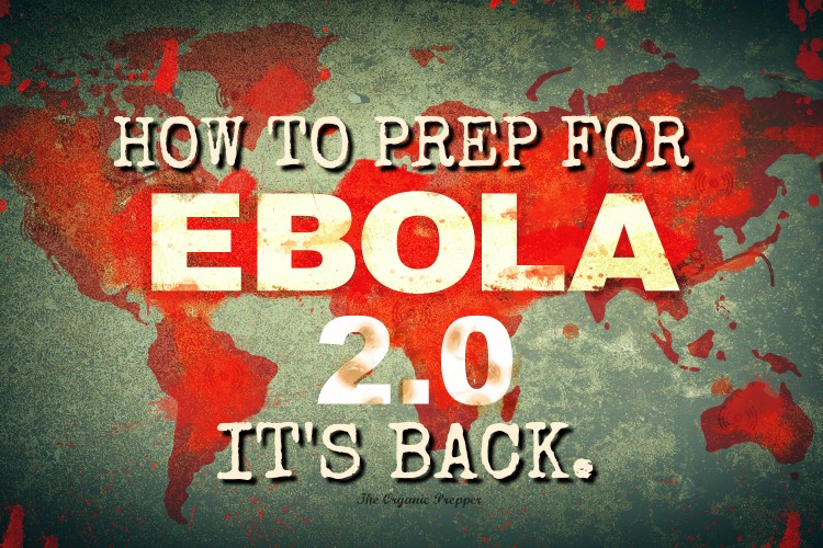 It\'s Back: How to Prep for Ebola 2.0