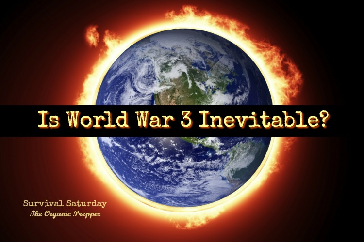 was world war 2 inevitable World war ii also known as the second world war, was a global war that lasted  from 1939 to  for other uses, see the second world war (disambiguation) and  wwii  japanese military strategy in the pacific war: was defeat inevitable.