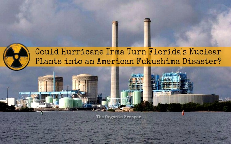 Could Irma Turn Floridas Nuclear Plants Into An American - Us nuclear power plants map florida