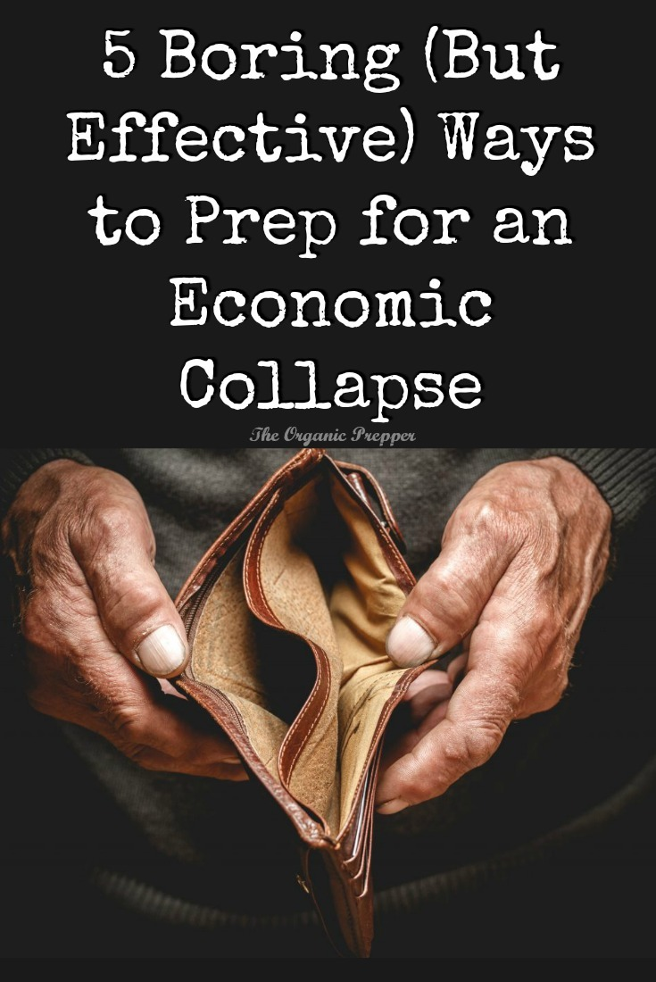 These tips aren't one bit glamorous, but anyone can follow them. You'll be ready to survive an economic collapse - even if it's just a personal one.