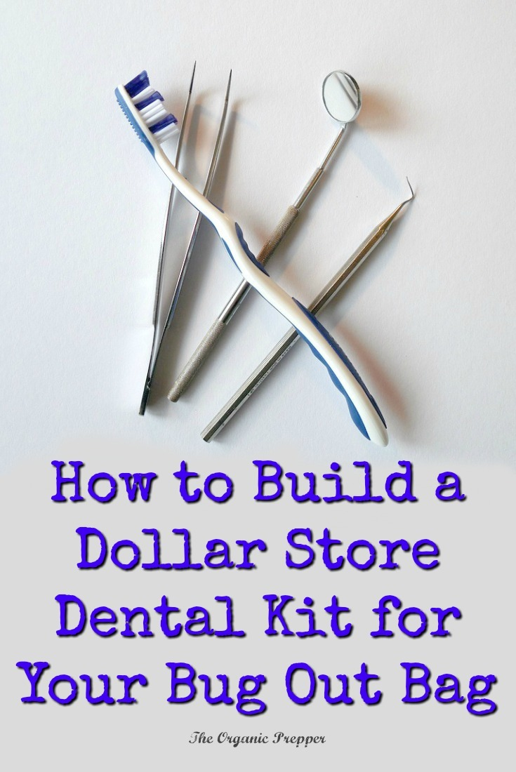 Can you imagine the misery of tooth pain while you're bugging out? Put together a simple dental kit for your bug out bag right from your local dollar store. | The Organic Prepper