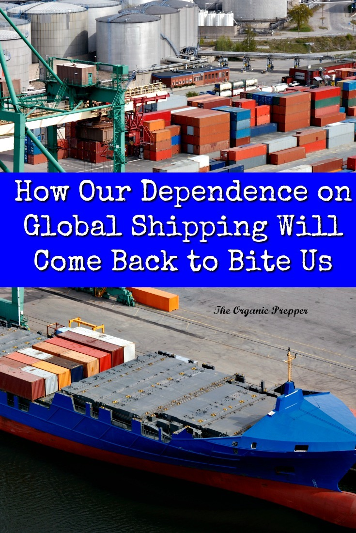 If the general public understood how vulnerable our reliance on global shipping made us, they'd all become preppers overnight. Here are just a few ways that supply disasters can strike. | The Organic Prepper