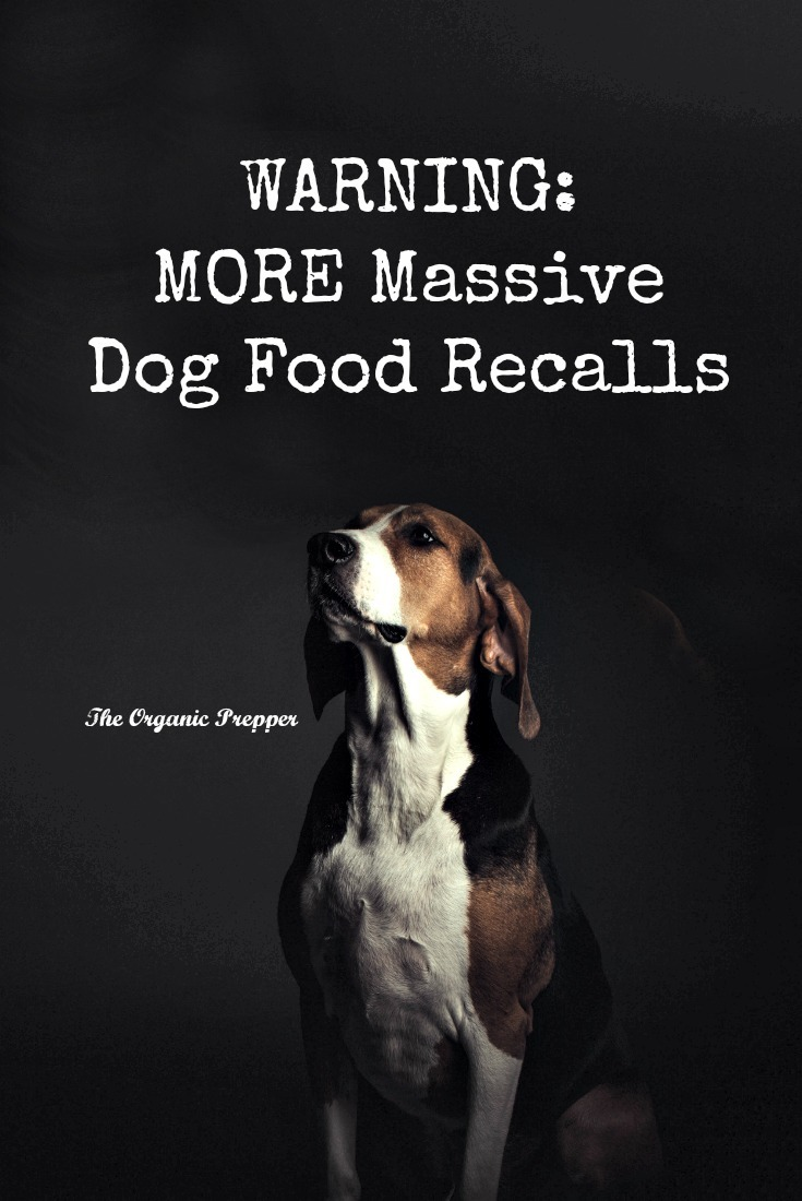 Another dog food recall! Now even more companies have recalled potentially deadly dog food.Check to see if your pet's food is on this new list. | The Organic Prepper
