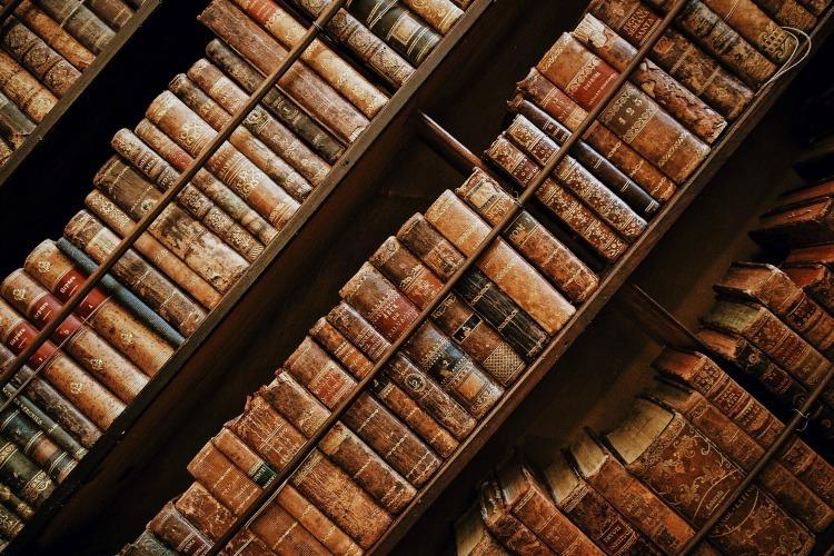250+ Books That Will Help Rebuild Civilization - The Organic
