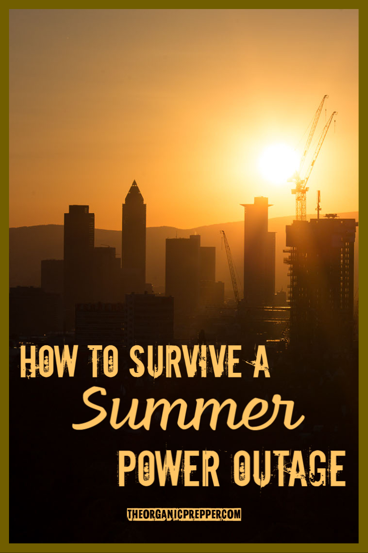 How to Survive a Summer Power Outage
