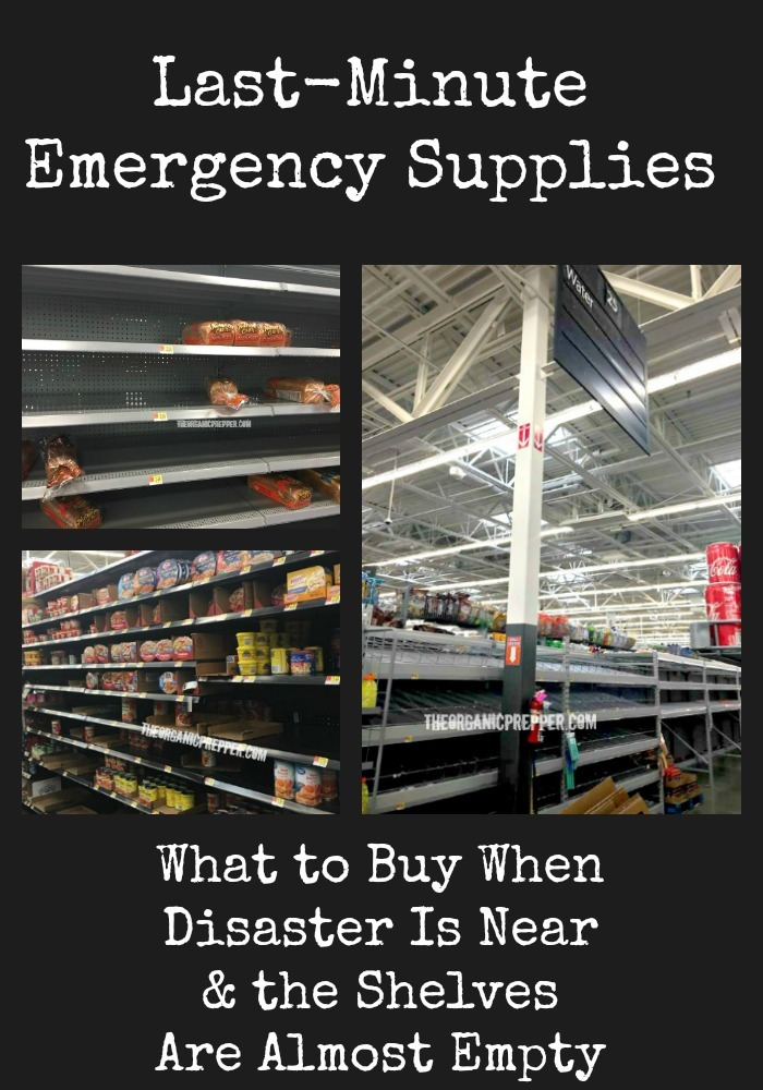 Last-Minute Emergency Supplies: What to Buy When the Shelves Are Almost Empty