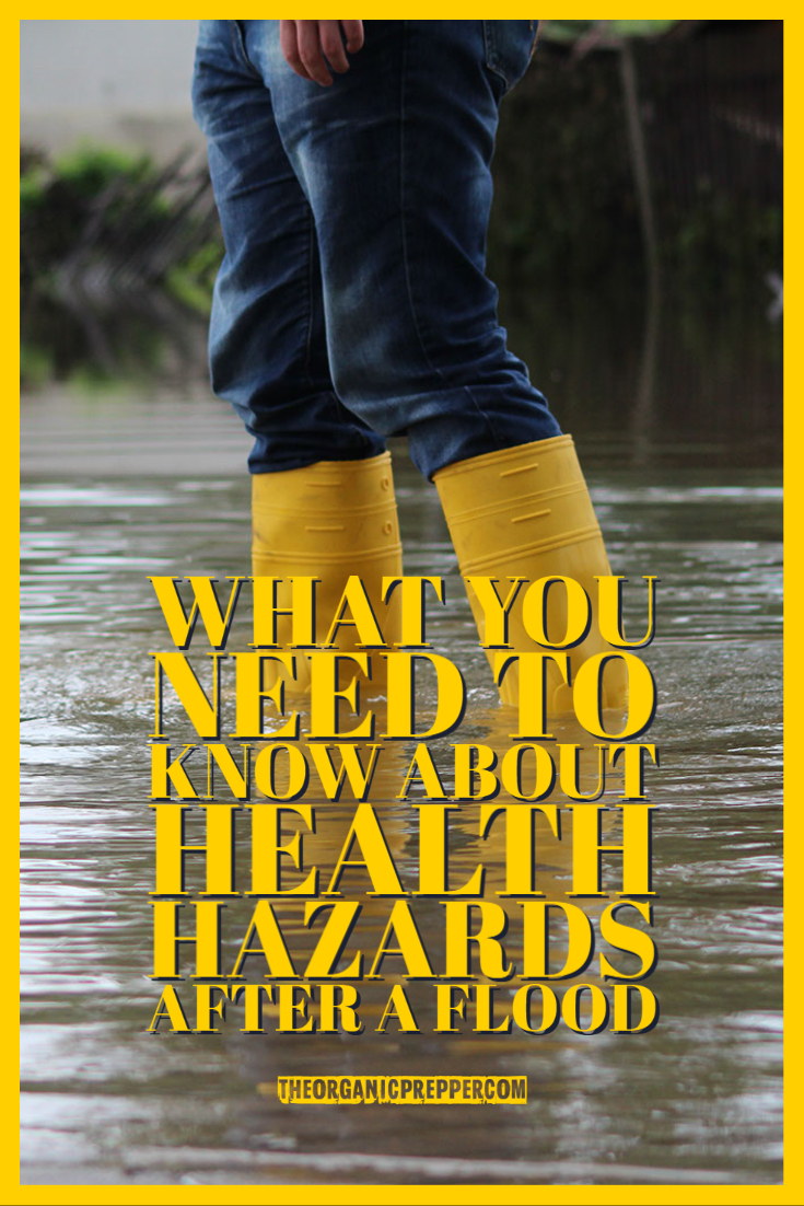 What You Need to Know About Health Hazards After a Flood