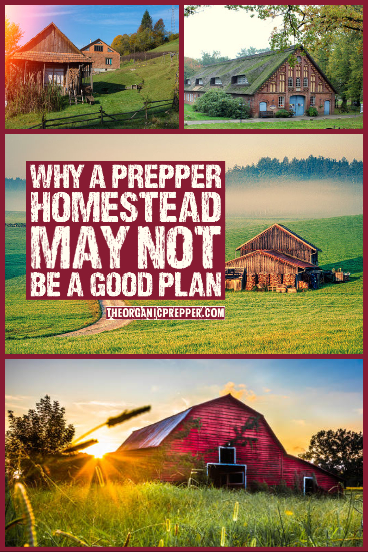 A Reality Check for Those Who Plan to Start a Prepper Homestead AFTER the SHTF