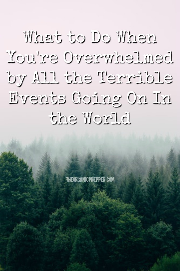 What to Do When You\'re Overwhelmed by All the Terrible Events Going On In the World