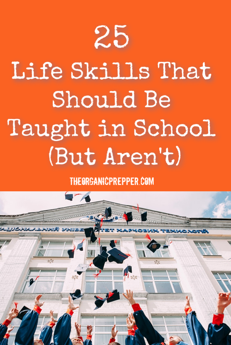 25 Basic Life Skills That Should Be Taught in School (But Aren\'t)